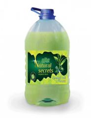 Nbsp;Liquid soap ODE of 5...
