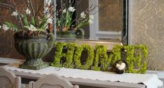 Стабилизированный мох и глоксинии
