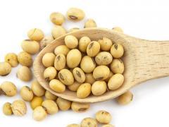 Soy (soybeans), Ukraine, Expor