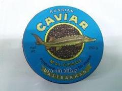 Caviar black sturgeon