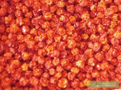 Dried mountain ash red