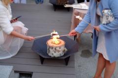 铁烤架燃料