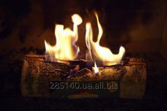 Wild fire L