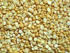 Yellow polished split peas