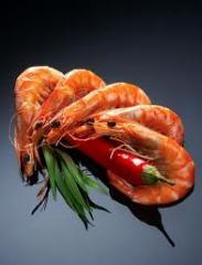 Живая рыба (оптом),мороженная рыба,морепродукты,икра