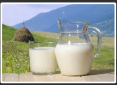 Substitutes of the ZTsM Whole Milk
