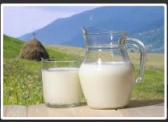 Substitutes of the ZTsM Whole Milk. art. M01