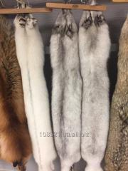 Fur of a polar fox