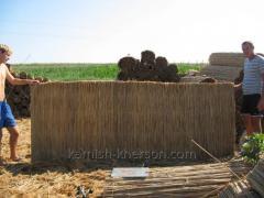 Reed matting 1,4h6 m
