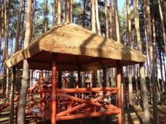 Reed střecha 640 x 480