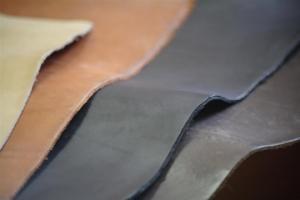 Skin for a footwear bottom