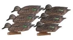 Effigies of ducks (teals) samkighg Pro-Grade Series Decoys, Early Season Green-Winged Teal Hens, 6 Pack