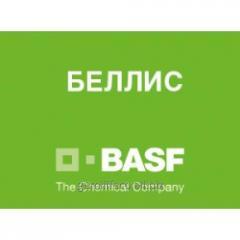 Фунгицид Беллис (БАСФ)