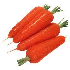 Морковь ранняя продажа, опт