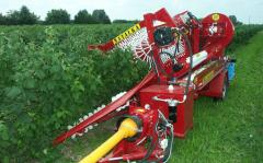 The combine for cleaning of raspberry