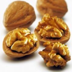 Walnut of caliber 30+