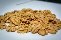 Light butterfly, walnut kernel for expor