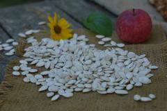 Sunflower seed pumpkin serovolzhsky
