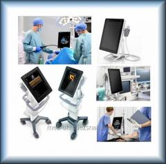 Mobile ultrasonography the device with the touch