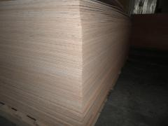 Plywood birch glued