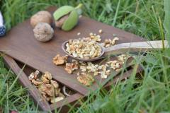 Light Walnut Brokens