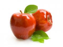 Apple is fresher, Semerenko's grade
