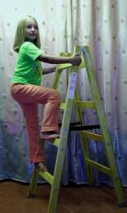 Wooden STARSTROY 2x4 step-ladder step-ladder