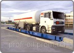 MGP-12 oil