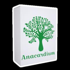 Анакардіум