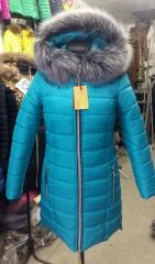 Jacket women's winter. Park Model Sophie