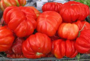 Семена томатов, редких салатных, пряных и