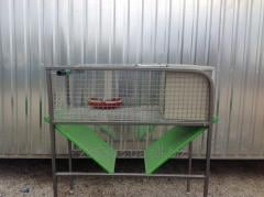 Cages for keeping of girlfriends
