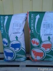 Premixes, BVD and Compound feeds for KPC TM