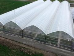 Greenhouse films