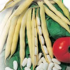 Бобовые в стручках и зернах, фасоль зерновая,