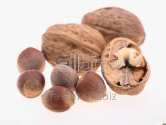 Walnut Amber 1/4