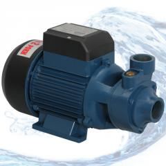 Pump superficial vortex Vitals aqua PQ 1165e
