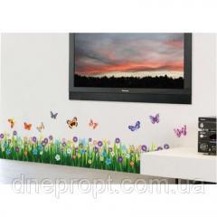 Autocolanţi de decorare pentru pereţi