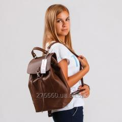 Backpack with the valve brown sateen