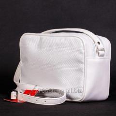 Snow-white reptile in a compact handbag