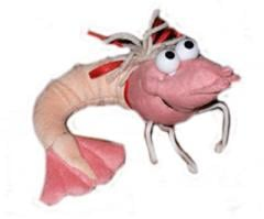 Shrimp soft toy