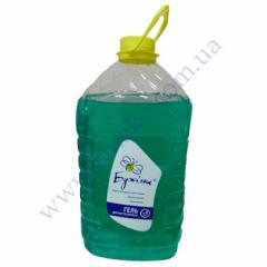 Means of Sanitarny-T of 5 l Bdzh_lk for toilets