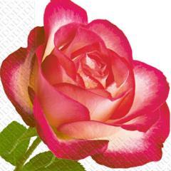 Салфетка 24х24 3сл. 20шт роза