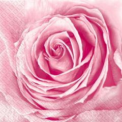 Салфетка 33х33 бутон розы 20шт