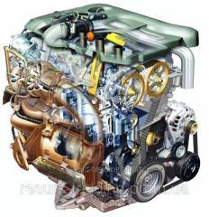 Oil for motors