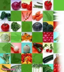 Семена овощей, Пакетированные семена овощных