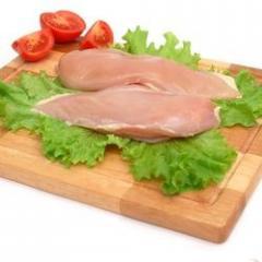 Frozen chicken packed, chicken fillet for export