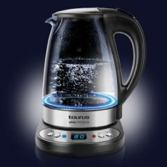 Electric kettle with adjustment of temperature