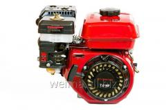 The WEIMA BT170F-T/25 engine for BT1100 vent of 25