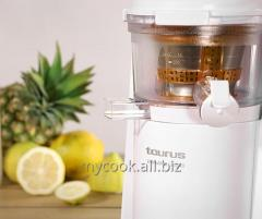 The Shnekovy juice extractor for maintenance of a